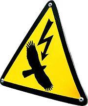 Avifauna: qui electrocuta, que pagui
