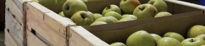 S'incrementen els preus de la cadena de valor de la poma i la pera coincidint amb la crisi del coronavirus