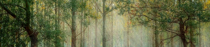 L'Alt Urgell proposa tres possibles ubicacions per a la seu de l'Agència de la Natura