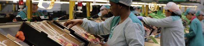 Actel avança la campanya amb fruita forana i formació de mà d'obra