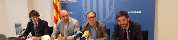 Lleida produirà enguany fins a un 17% menys de fruita de pinyol