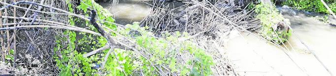 El tram baix del riu Segre, 51 dies per sobre dels 100 m cúbics per segon