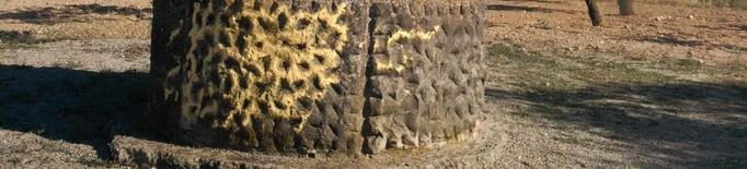 Denuncien pintades de groc en una creu funerària a Arbeca