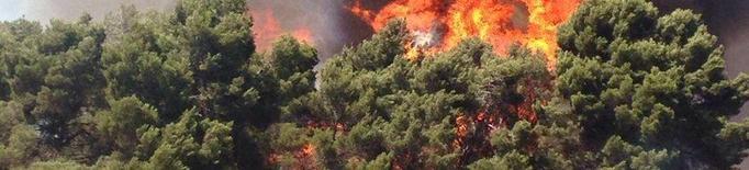 Inclouen com a danys d'un foc el cost de l'operatiu d'extinció