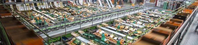 Fruits de Ponent s'implica a millorar la sostenibilitat