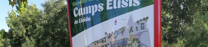 Renoven els plafons dels Camps Elisis