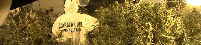 Sis detinguts per una partida de 13 quilos de cocaïna i 4 d'heroïna