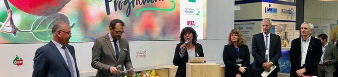 Empreses de Lleida i l'IRTA tenen a punt ja desenes de noves varietats de fruita