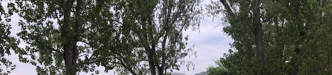 La Granja regula l'ús de la zona de barbacoes