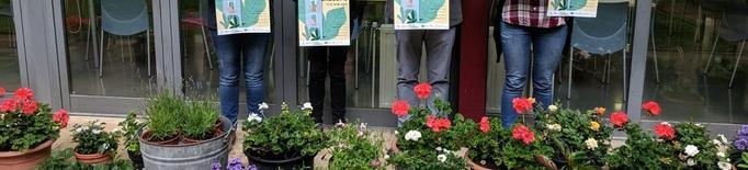 Balaguer reparteix flors per embellir balcons de la ciutat