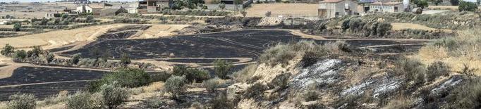 Els Bombers donen per extingit l'incendi forestal de la Ribera d'Ebre
