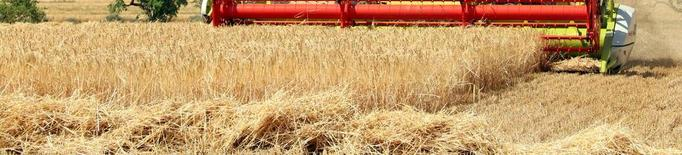 Els pagesos catalans cobren 265,4 milions de la PAC
