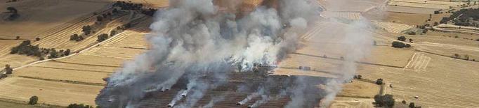 Alarma per dos nous focs, que arrasen 70 hectàrees a la Segarra