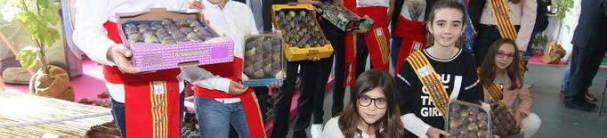 La figa coll de dama d'Alguaire opta a la IGP i ajorna la DO