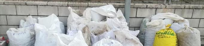 Decomissen més de 1.500 quilos d'ametlles robades
