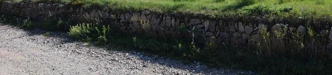 Bellver tindrà el primer centre de rehabilitació de cavalls del Pirineu