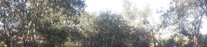 Recapten 4.000 euros per a l'Escola Bosc de Montgai