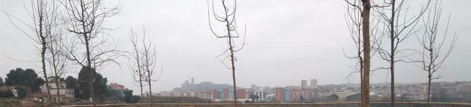 Nous arbres per als miradors del Secà de Sant Pere