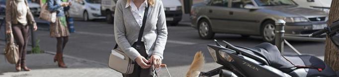 Arxiu persona cega gos pigall