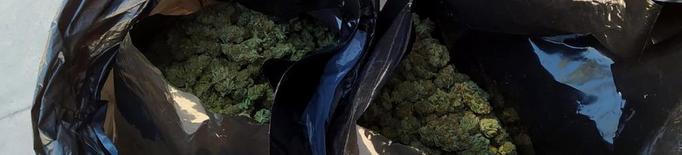 Guàrdia Civil bosses amb marihuana trobades a la furgoneta