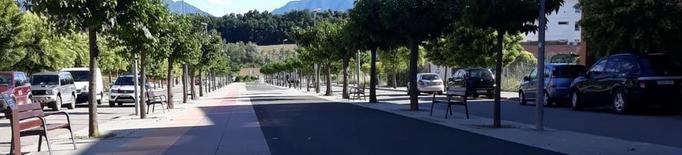 Tremp tala 44 arbres perquè taquen carrers i voreres