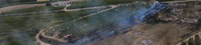 Incendis de vegetació a la Granja i Lleida