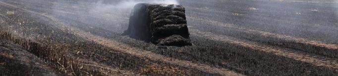 Incendis a Bell-lloc, Torrelameu i Lleida