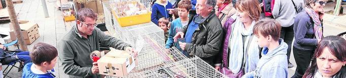 Vilanova de Meià comptarà amb un pavelló per a la Fira de la Perdiu