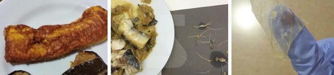 Denuncien que 2 residències públiques de Lleida serveixen menjar de mala qualitat