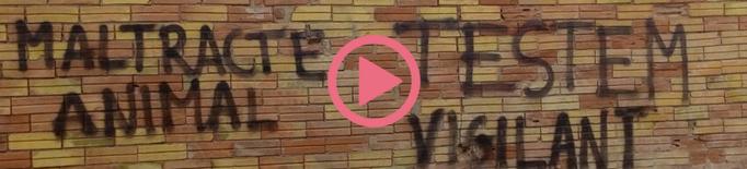 """⏯️ Denuncien pintades """"amenaçadores"""" contra un ramader de Juneda per """"maltractament animal"""""""