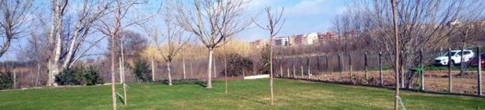 La Paeria planta prop de 900 arbres i 1.200 plantes arbustives durant aquest hivern
