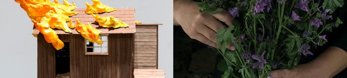 La Panera obra la convocatòria de les beques Art i Natura a la creació 2020