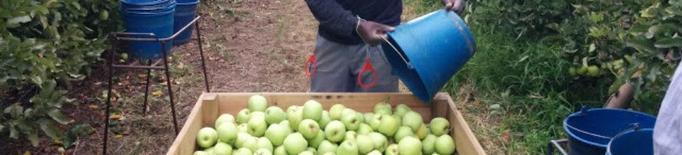Unió de Pagesos trasllada a CCOO i UGT la necessitat de coordinar esforços per la propera campanya agrària