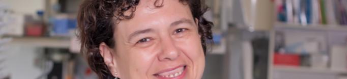 Avanç de l'IRB Lleida en la predicció del càncer colorectal