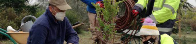 L'Arborètum incorpora 37 noves espècies d'arbres, arbustos i plantes durant el 2020