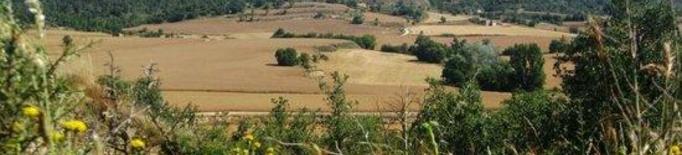 Agricultura abona 4,4 MEUR de l'ajut Producció Integrada de l'any 2019