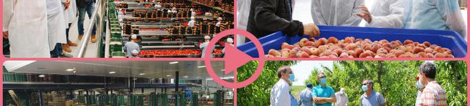 ⏯️ El Govern destaca l'esforç del sector agrari per l'excel·lència