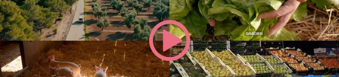⏯️ Agricultura homenatja el sector agroalimentari per proveir aliments durant el confinament