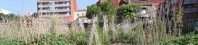 Tàrrega ajorna el programa d'horts urbans a causa de la pandèmia