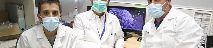 Identifiquen una proteïna clau per evitar la metàstasi del càncer de mama