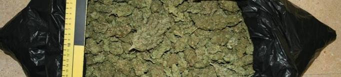 Detinguts amb quasi un quilo de marihuana a Lleida