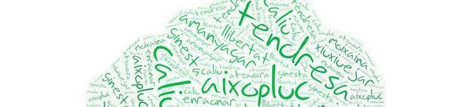 Quines són les 10 paraules més boniques del català?