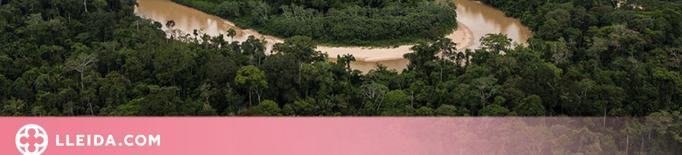 La UdL participa en un projecte liderat per la NASA sobre fluxos de carboni de la vegetació