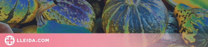 L'IEI posarà en valor el consum de fruites i hortalisses en una doble jornada de debat