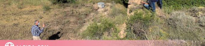 Inicien les obres d'adequació del molí Tomàs, al municipi de Torrebesses