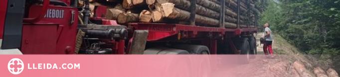 La Val d'Aran aprofitarà la fusta dels boscos per alimentar calderes de biomassa