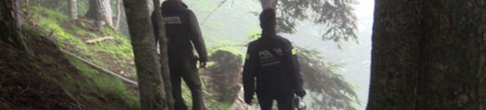 Investigació sobre la mort de l'ós Cachou
