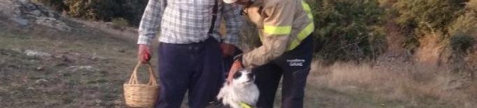 Un gos dels Bombers troba un home que s'havia perdut a l'Alt Urgell