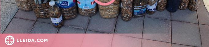⏯️ La Seu d'Urgell 'exposa' burilles de tabac al carrer per conscienciar a la població