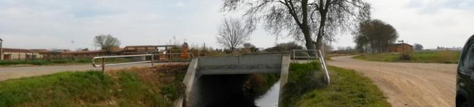 Plantaran un centenar d'arbres a la segona sèquia del canal d'Urgell, a Vallfogona de Balaguer